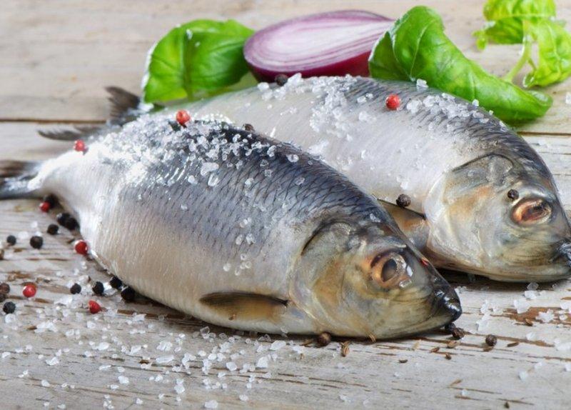 До чого сниться солона риба: тлумачення за різними сонникам для жінок і чоловіків
